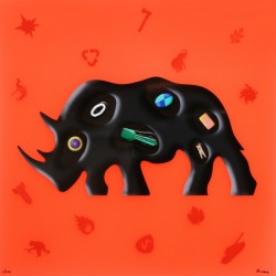 """Rinoceronte"""